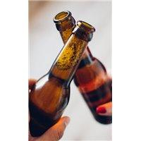 Beer Bottle - Buy Beer Bottles at - Vidropack.com
